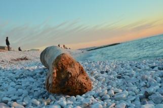 Un tronco sulla spiaggia di Marina di Pisa